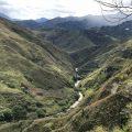 کلمبیا نارینو | کافه ساپورت