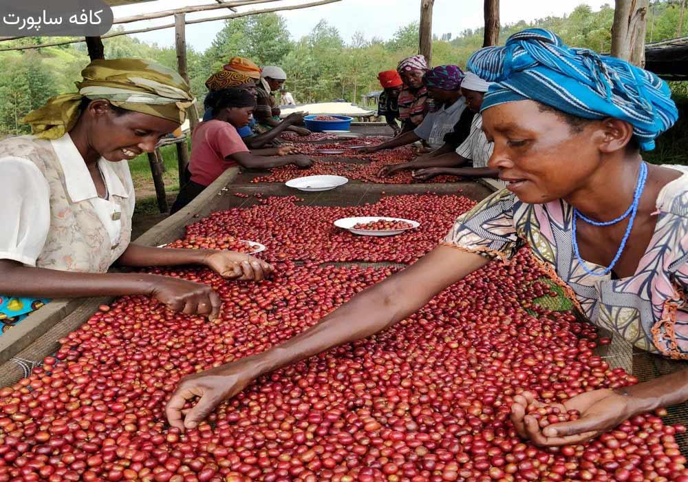 قهوه رواندا