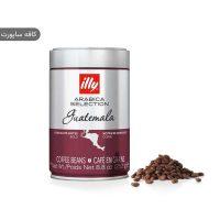 دانه قهوه ایلی گواتمالا
