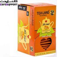 چای کیسه ای پرتقال و زنجبیل تی لند